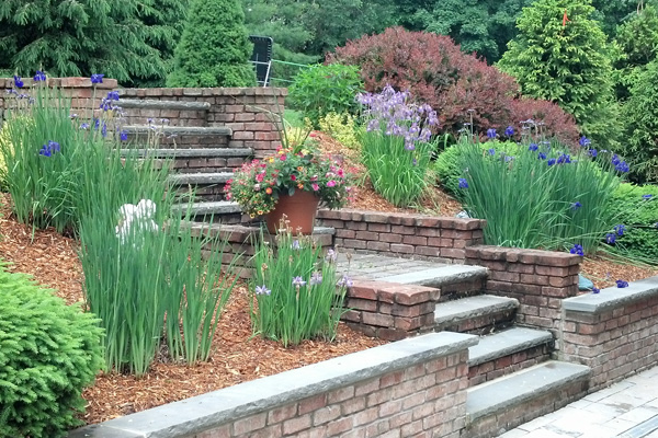 Landscape Design - Services - Elite Landscape Design - Elite Landscape Design